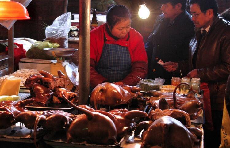 Wuhan hayvan pazarı