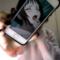 AngryCat5001