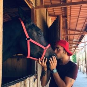 HorseTrainer