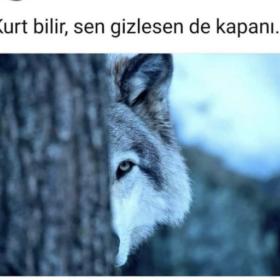 Bir_adam_