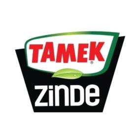 Tamek Zinde