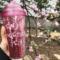 Blossom_